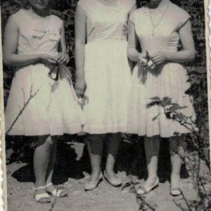 Pokolenie lat 50-tych
